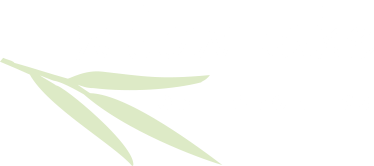 Willow Lake Orthodontics